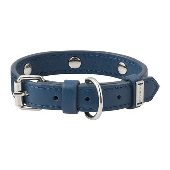 Royal Jack Pet Collar