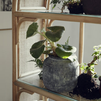 Bali Bookcase - Rattan With Glass Shelves