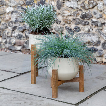 Wooden Base Planter - Medium