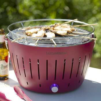 Portable Charcoal Grill - Mini - Red