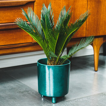 Pisa Planter - Emerald