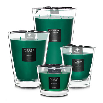 All Seasons Scented Candle - Arusha Forest