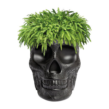 Mexico Skull Small Planter - Black