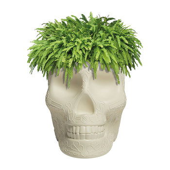 Mexico Skull Small Planter - Ivory