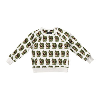 Children's Dino Sweater