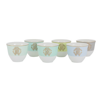Lizzard Sunrise Arabic Cups - Luxury Box Set of 6