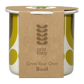 Grow Your Own Basil - Sunflower Striped Tulip Pot