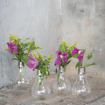 Edison Glass Bulb Vase