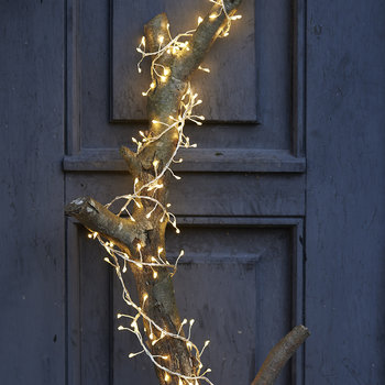 Trille Cluster Fairy Lights - Stars - Clear