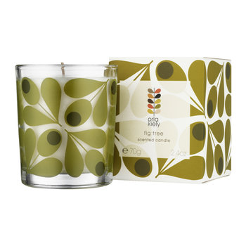 Fig Tree Travel Candle - 70g