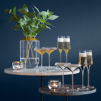 Space Champagne/Cocktail Glass - Set of 2 - Platinum