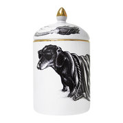 cosy-candle-hot-dog-stripy-blanket-280g