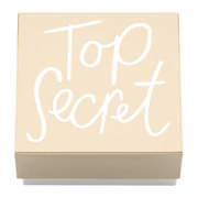 all-that-glistens-top-secret-covered-box