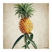 botanical-pineapple-print-50x50cm