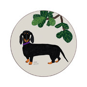 anne-bentley-dogs-coaster-dachshund