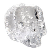 still-life-skull-votive-clear