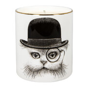 cutesy-candle-cat-in-hat