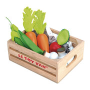 5-a-day-vegetable-wooden-toys