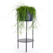ent-planter-black-medium