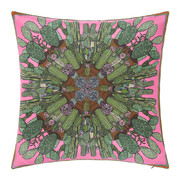 coussin-cactus-combustibale