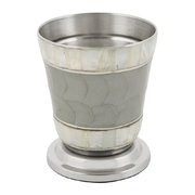 classic-toothbrush-holder-platinum