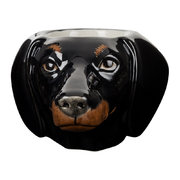 dachshund-egg-cup-black-tan