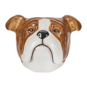 english-bulldog-egg-cup