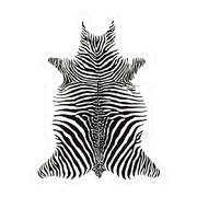zebra-vinyl-floor-mat-white-medium
