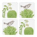 Thornback & Peel - Cactus & Bird Coasters - Set of 4