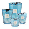 Baobab Collection - Palm Scented Candle - West Palm - 10cm
