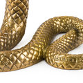Diesel Living with Seletti - 'Culture Skulture' - Snake
