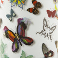 Christian Lacroix - Base Butterfly Parade