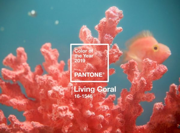 The Pantone Color of the Year 2019 is Announced as Living Coral